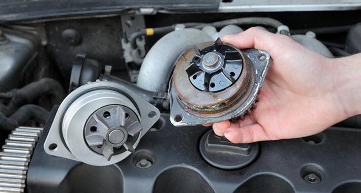Jaguar Water Pump Check